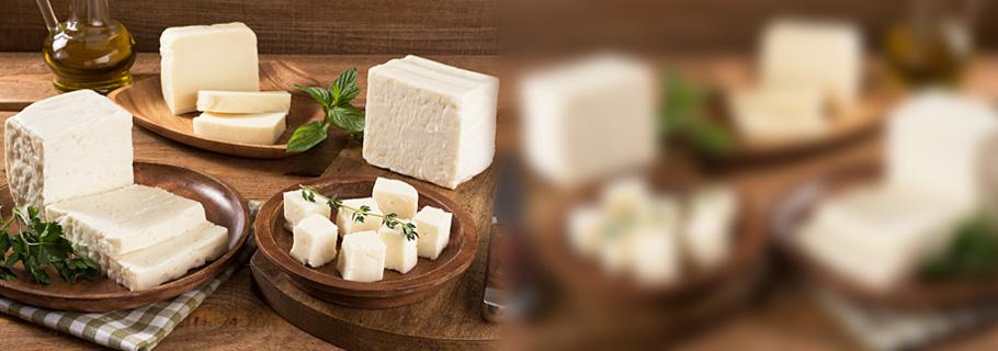 توركو أنواع الجبنة البيضاء التقليدية