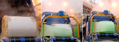 Packaged Pulp Production Plant Began to Operate