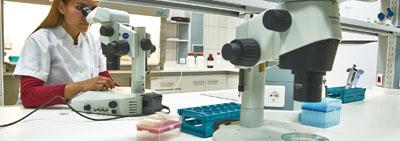 Embriyo Üretim Merkezi Kuruldu