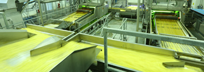Onion Rings and Potato Croquette Production Plant Began Production