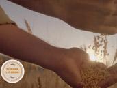 Torku Çatalhöyük Bulgur Reklam Filmi