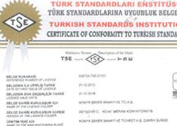 TSE - 13375 - Kek