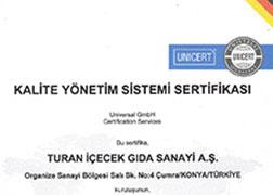 شهادة نظام إدارة الجودة تي إس إي - آيزو 9001