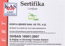 OHSAS 18001:2007 İş Sağlığı ve Güvenliği Yönetim Sistemi Belgesi