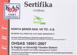 OHSAS 18001:2007 Occupational Health and Safety Management System Certificate