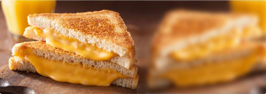 Torku Özel Peynirler
